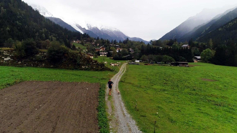 Chamonix : Gobi, le chien marathonien - Tout le sport