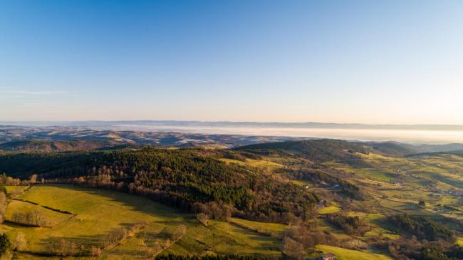 Loire : Forêts du Forez - Mont du Forez